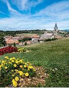 Miels d'Occitanie